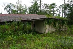 Old Grove Barn