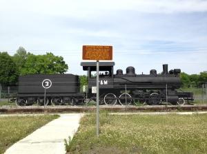 Patterson-McInnis Train