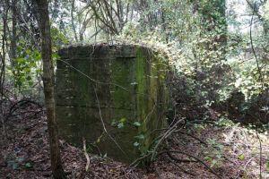 Sugar Mil Ruins