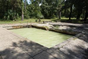 Old Pool at Hampton Springs