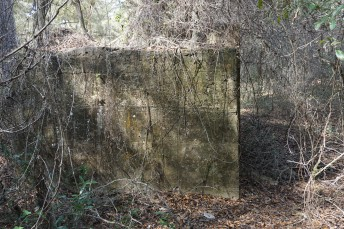 Oriole Sugar Mill Ruins