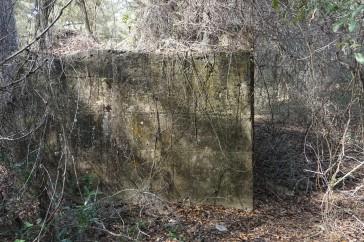 Oriole Sugar Mill Ruins