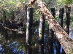 Remains of a Railroad Trestle