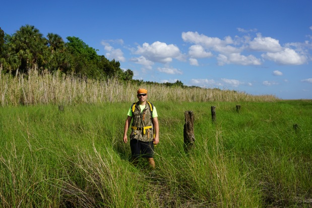 Mound History on The St. Johns River (Indian FieldGrove)
