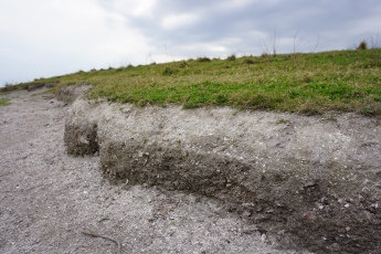 Mound and Shells