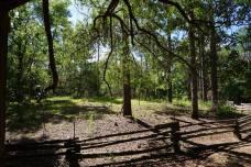 Tishler Mound
