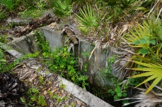 Old Cattle Dipping Vat