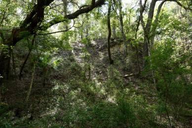Old Phosphate Mine