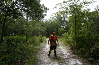 Exploring Goethe State Forest
