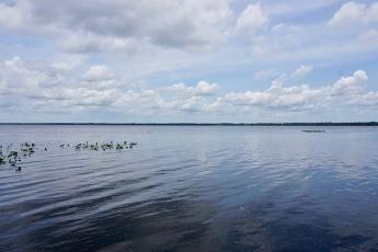 Lochloosa Lake