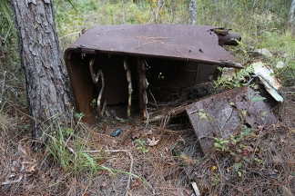 Remains by Cabin