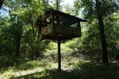 Withlacoochee Wilderness Camp-Camp Withlacoochee