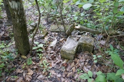 Foundation by Homestead Site