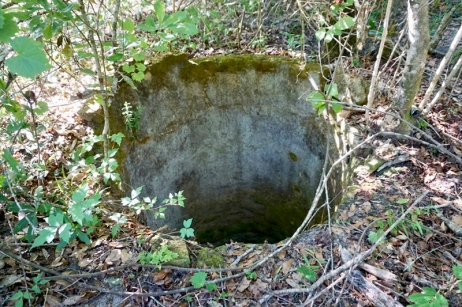 Well by Homestead Site
