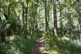 Hiking Trail at St. Francis