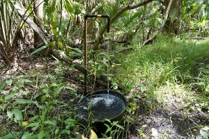 Old Well at St. Francis
